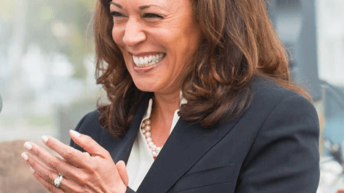 Kamala Harris: Interesting Things About Joe Biden's Running Mate