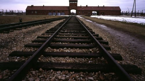 "A Filmmaker's Review: ""Auschwitz: The Nazis and the Final Solution"" (BBC, 2005)"
