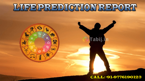Free Vedic astrology life predictions: Deep insights into your Future Life