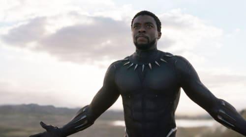The New King of Wakanda