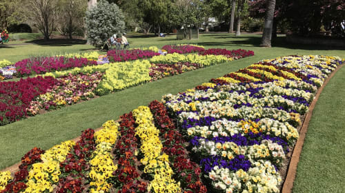 15 Best Things to Do in Toowoomba