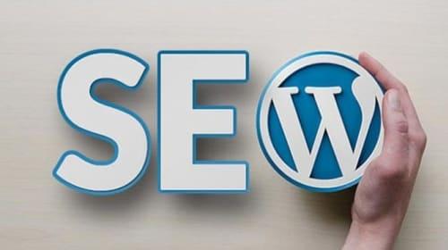 Larby Amirouche Lists The Best SEO Plugins On WordPress