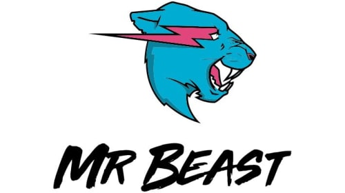 The Best Youtuber: Mr Beast
