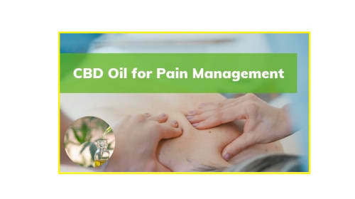 How to use CBD Oil for pain?