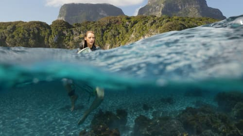 The Shallows - A Movie Review