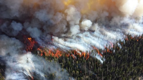 Preventing Health Issues From Wildfire Smoke