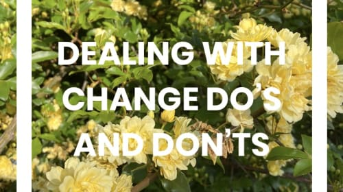Dealing with Change Do's and Don'ts