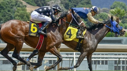 Things you should know about Horse Racing Ratings