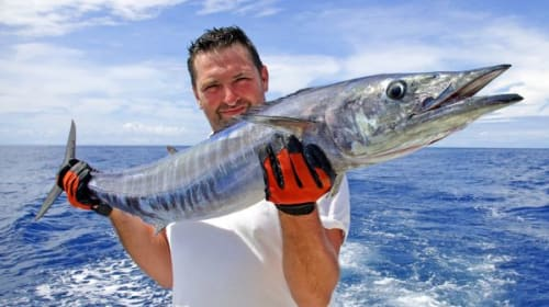The Ultimate Guide to Wahoo Fishing