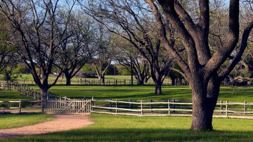 Texas Ranches: An Oasis of Peace