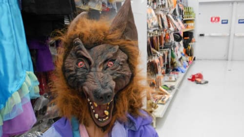 The Kid In The Werewolf Mask
