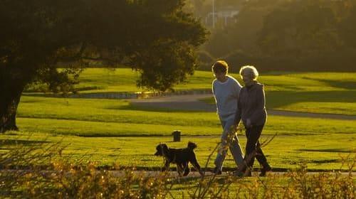 7 benefits of walking