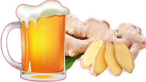 Brew Your Own Ginger Beer (Ale)