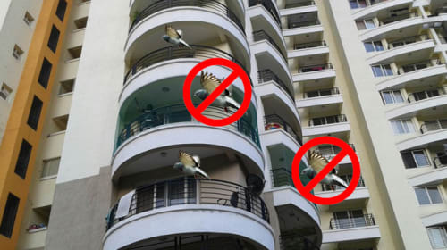 Balcony safety nets in Hyderabad.