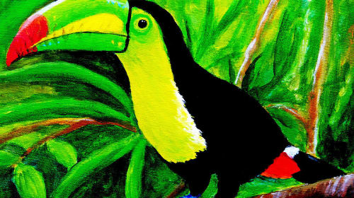The Toucans of Costa Rica