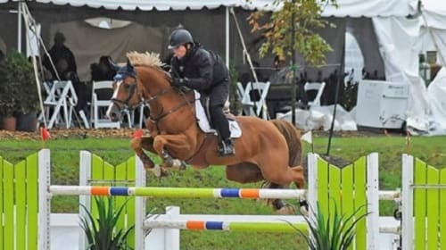 Conor Swail Rules for Showjumping and Complete guidance