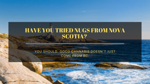 Have you tried Nugs from Nova Scotia?