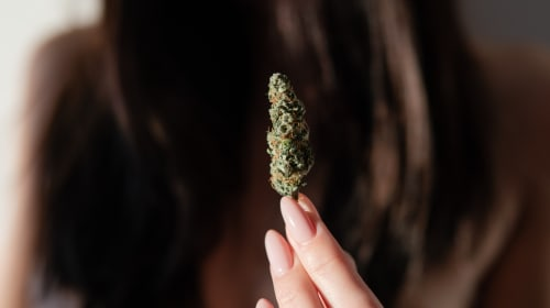 Are There Harmful Effects of THC?