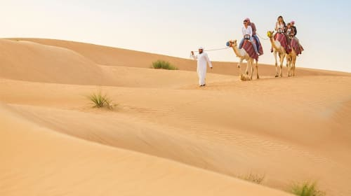 Way On the Trip Of The Desert Safari
