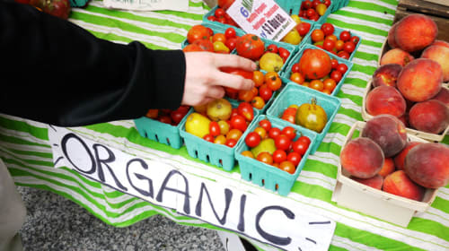How Is Organic Food Better For You – And How to Eat Healthily!