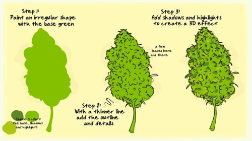 Learn How to Draw Marijuana: A Step-by-Step Guide