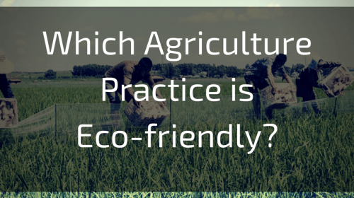 Which Agriculture Practice is Eco-friendly?