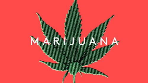 Guess What? Marijuana Is Not a Gateway Drug