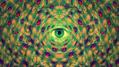 LSD vs. Mushrooms