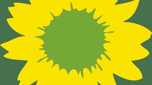 Green Politics Must Evolve, Quickly