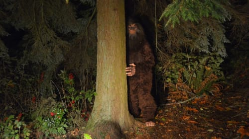 Creatures, Cryptids, and Legends of the States (Pt. 3)
