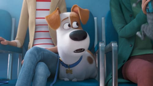 Movie Review—'The Secret Life of Pets 2'