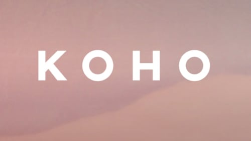 Koho: Nearly Two Years In