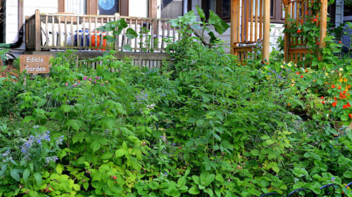 Growing a Food-Based Economy