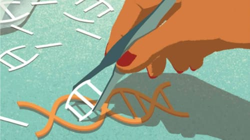 Are We Going to Cure Cancer with CRISPR?