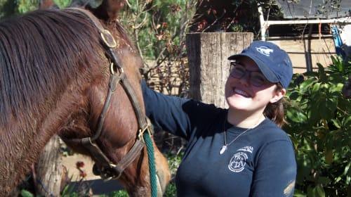 Adopting a Horse