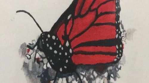Butterfly in a Trap