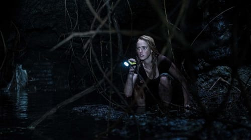 'Crawl' Is the Kind of Dumb, Fun Summer B-Movie That Hits Theaters Once in a Blue Moon