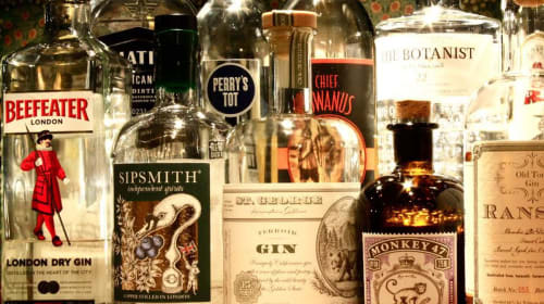 The History of Gin in America