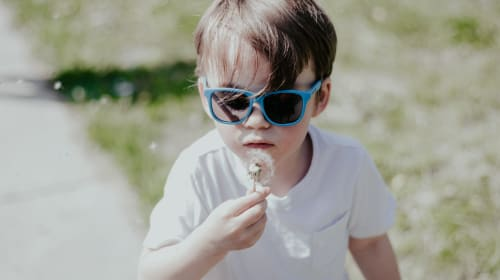 10 Family Summer Date Ideas