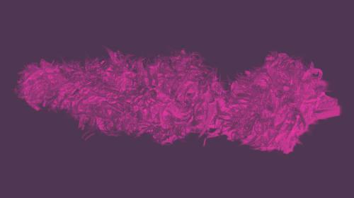 Zihuatenejo Purple Marijuana Strain