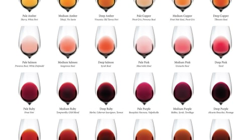 Wine Facts and Myths Debunked