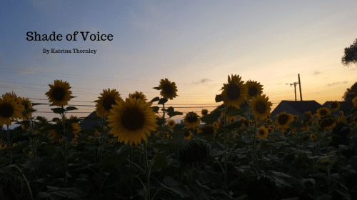 Shade of Voice