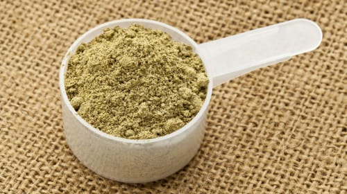 Best Hemp Protein Powders to Consider Using