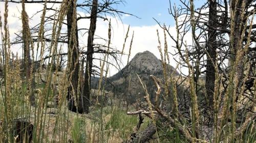Camping and Climbing at Greyrock