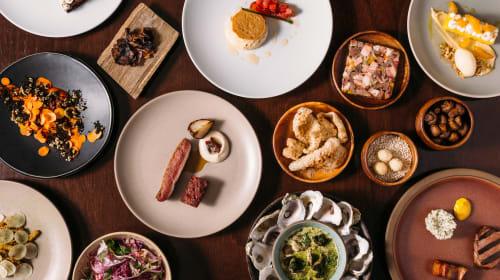 The Best Restaurants in Dallas,TX