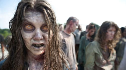 Should Netflix Go Apocalyptic with a New Zombie Show?