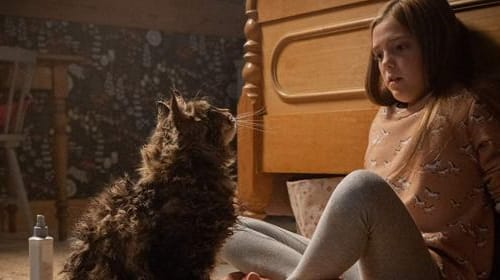 'Pet Sematary' (2019)