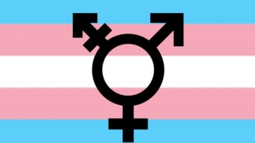How Many Genders Are There?