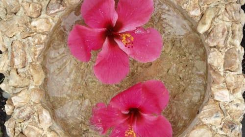 Bikram Yoga for Mindfulness and Strength