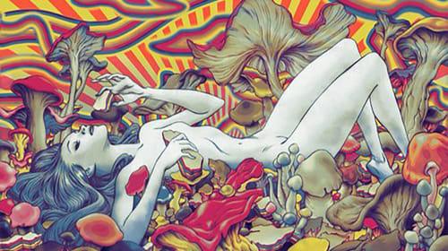 Hippie Lifestyle Illusion